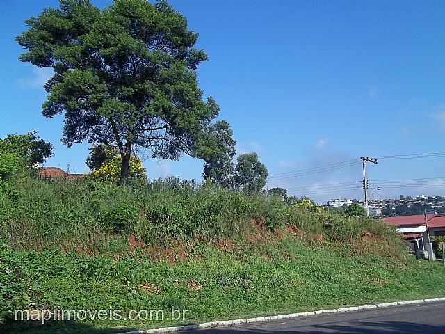 Mapi Imóveis - Terreno, Rondônia, Novo Hamburgo - Foto 4