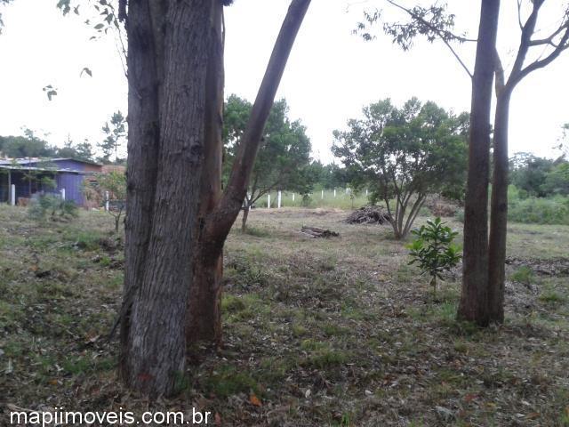 Mapi Imóveis - Terreno, Centro, Osorio (305805) - Foto 6