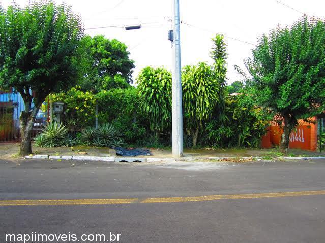 Mapi Imóveis - Terreno, Santo Afonso (339500) - Foto 2