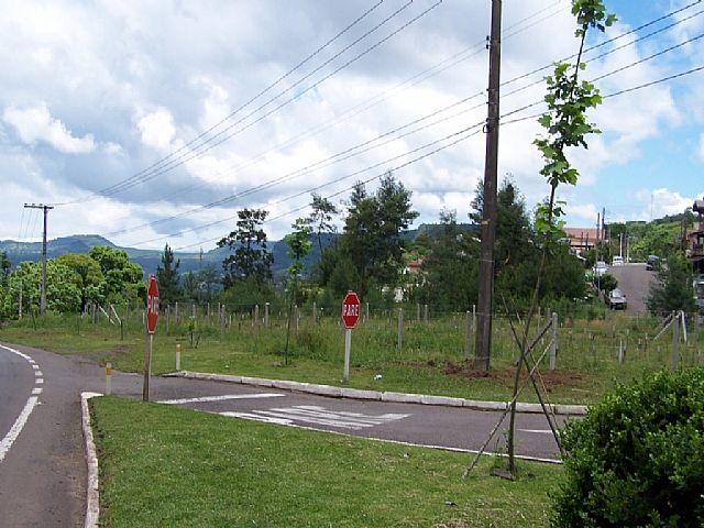 Terreno, Três Pinheiros, Gramado (10873) - Foto 7
