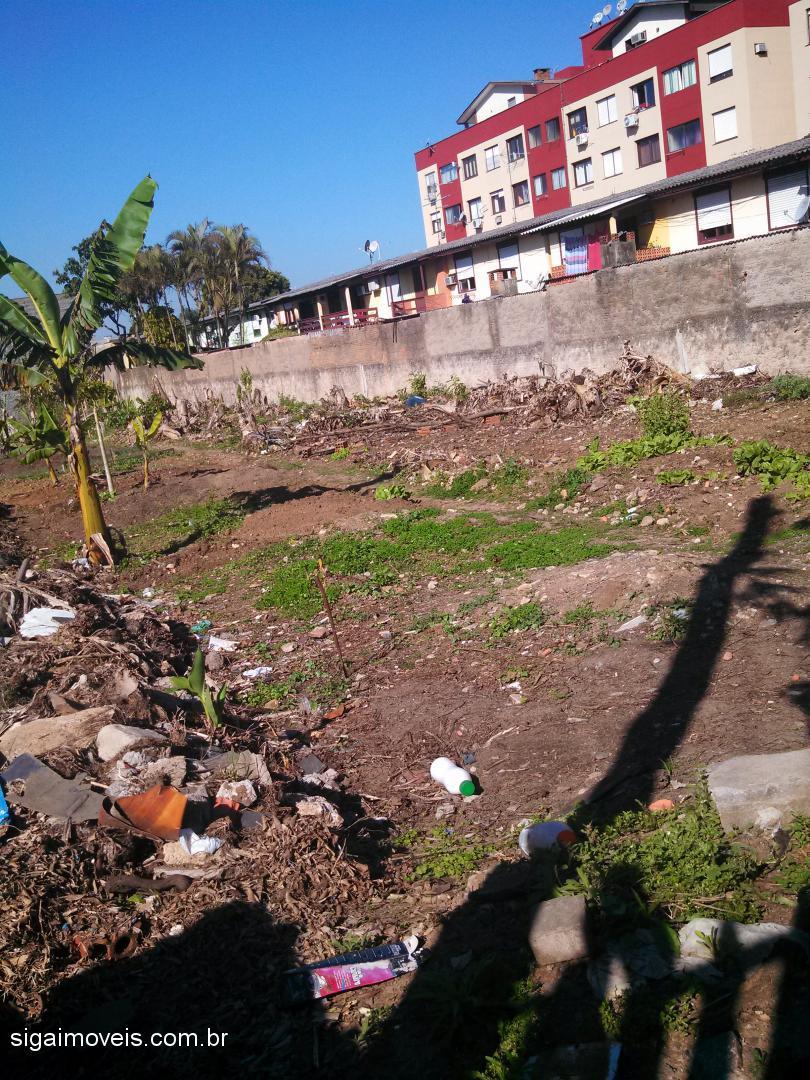 Terreno, Ponta Porã, Cachoeirinha (361853) - Foto 2