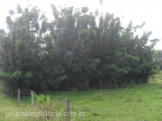 Terreno, Caju, Nova Santa Rita (138235) - Foto 3