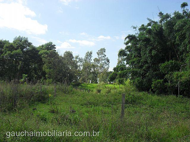 Terreno, Caju, Nova Santa Rita (138235) - Foto 4