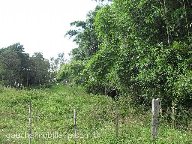 Terreno, Caju, Nova Santa Rita (138235) - Foto 6