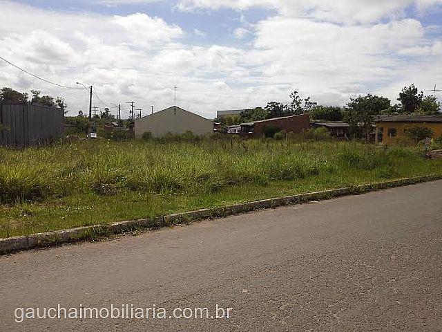 Terreno, Pedreira, Nova Santa Rita (194945)