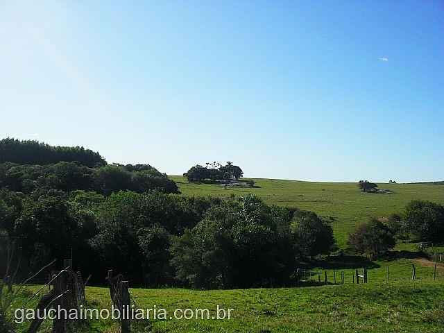 Gaúcha Imobiliária - Casa, São Martim (264025) - Foto 3