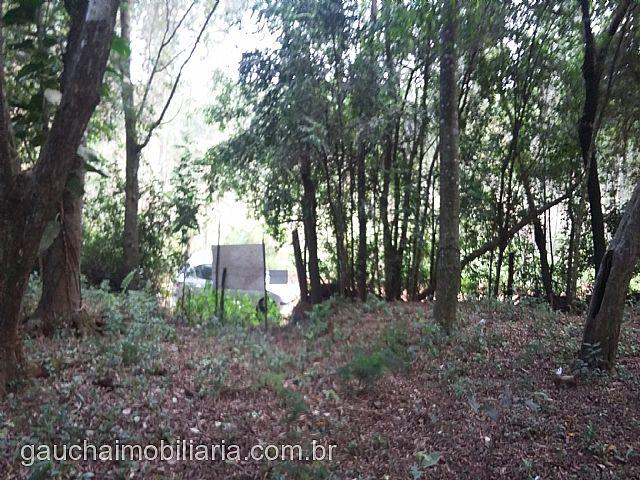 Terreno, Caju, Nova Santa Rita (277682) - Foto 3