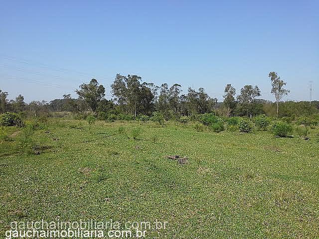 Im�vel: Ga�cha Imobili�ria - Casa, Sanga Funda (277737)