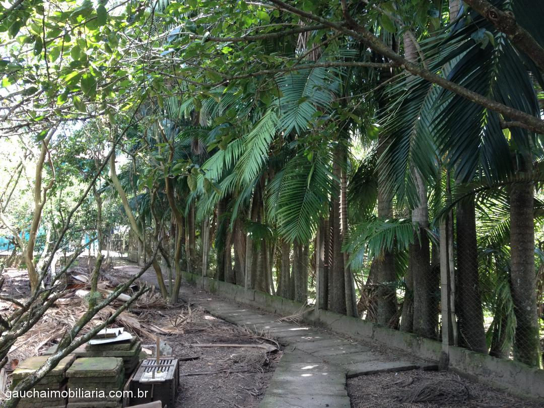 Casa 3 Dorm, Floresta, Nova Santa Rita (305497) - Foto 6