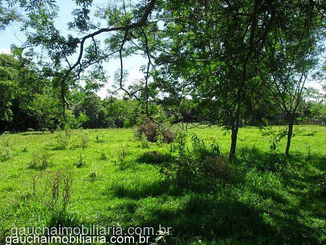 Terreno, Morretes, Nova Santa Rita (312040) - Foto 9