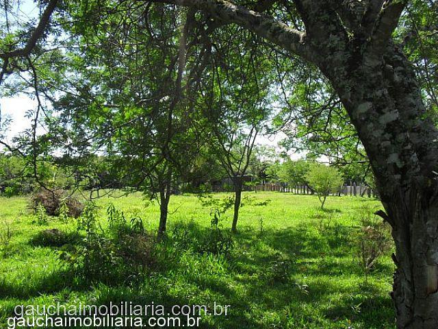 Terreno, Morretes, Nova Santa Rita (312040) - Foto 8