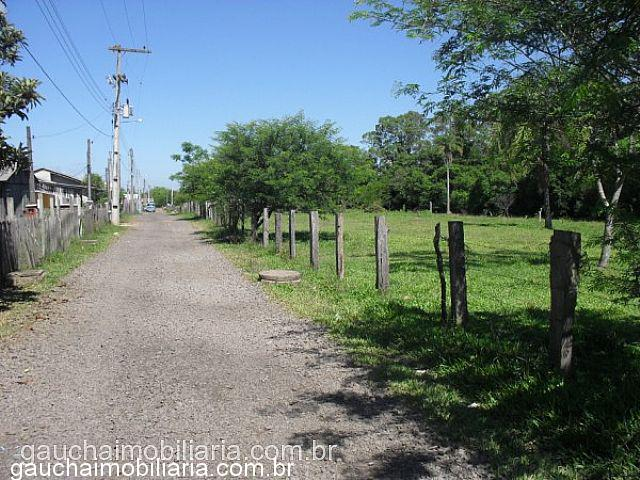 Terreno, Morretes, Nova Santa Rita (312040) - Foto 6