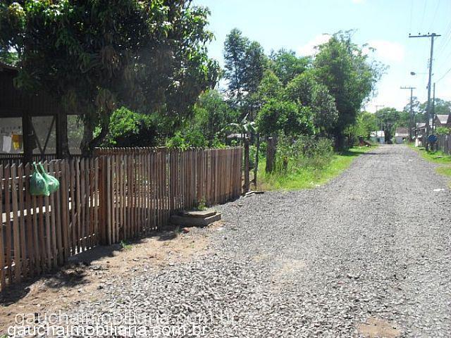 Terreno, Morretes, Nova Santa Rita (312040) - Foto 5