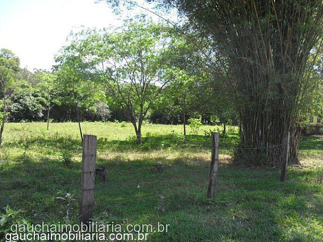 Terreno, Morretes, Nova Santa Rita (312040) - Foto 4