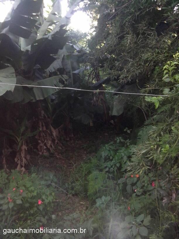 Terreno, Berto Cirio, Nova Santa Rita (315025) - Foto 2