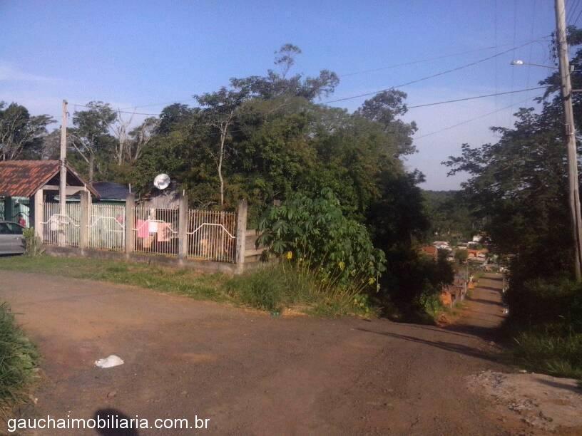 Terreno, Berto Cirio, Nova Santa Rita (315025)