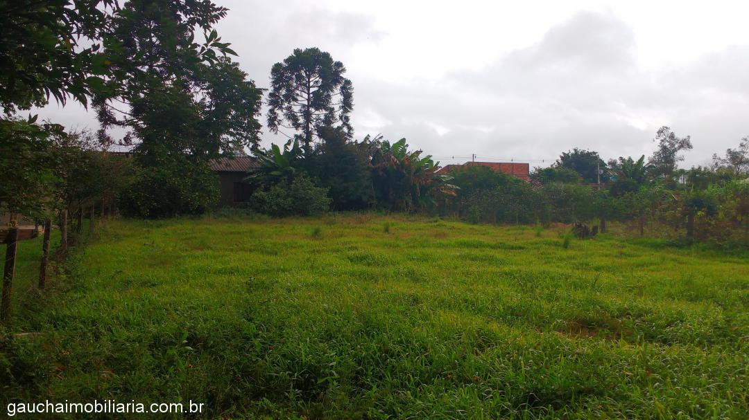 Casa, Floresta, Nova Santa Rita (316210) - Foto 3