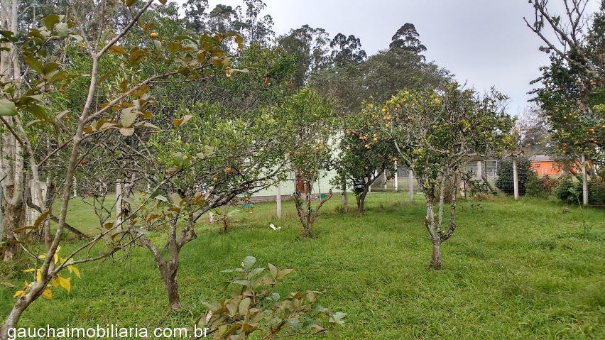 Casa 3 Dorm, Morretes, Nova Santa Rita (336508) - Foto 8