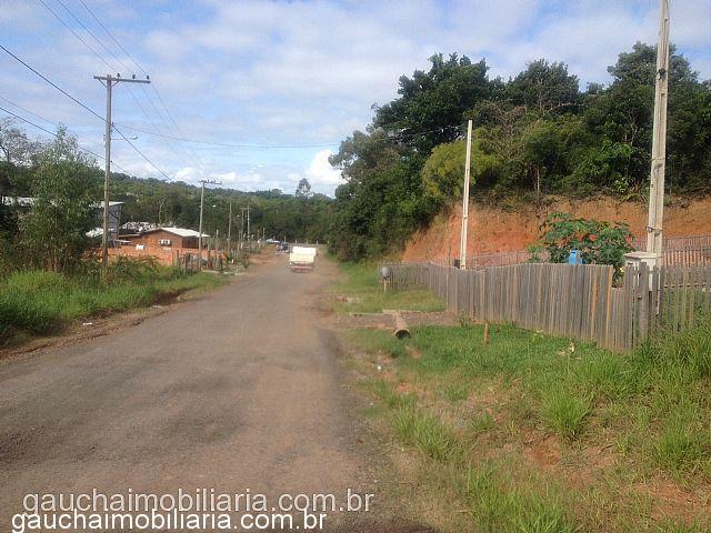 Terreno, Berto Cirio, Nova Santa Rita (338031)