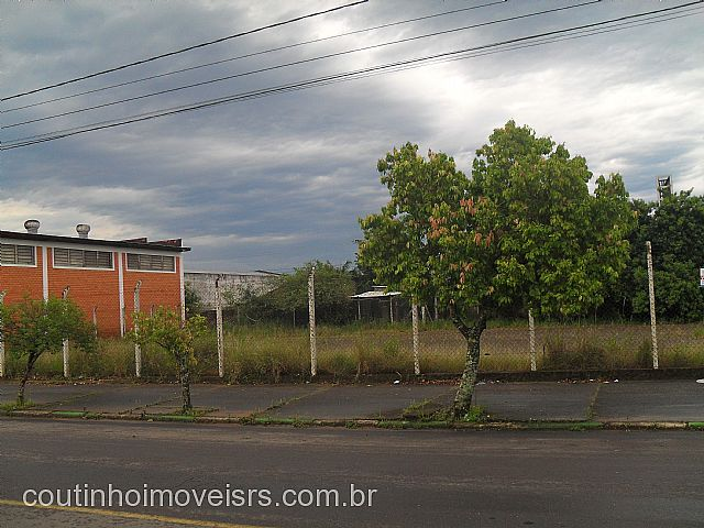 Coutinho Imóveis - Terreno, São Luiz, Sapiranga - Foto 4