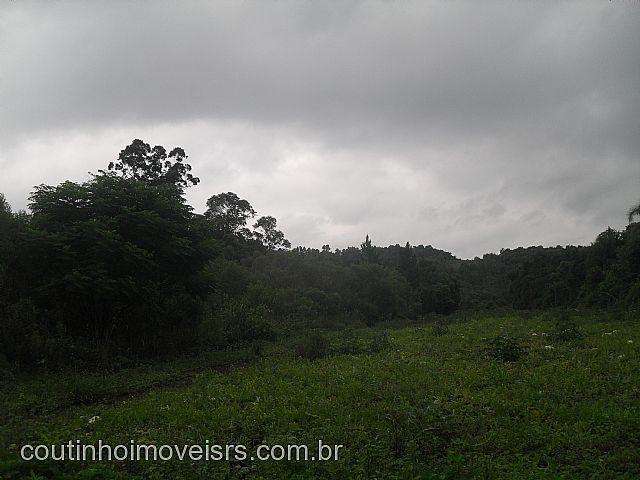 Chácara, 300m da Br 116, Dois Irmãos (199946) - Foto 6