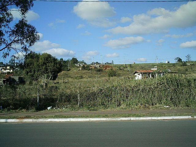 Coutinho Imóveis - Terreno, Oeste, Sapiranga