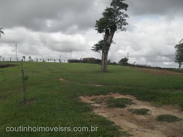 Chácara, Centro, Ararica (81623) - Foto 6