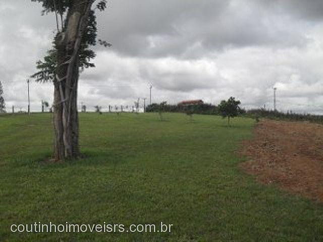 Chácara, Centro, Ararica (81623) - Foto 4
