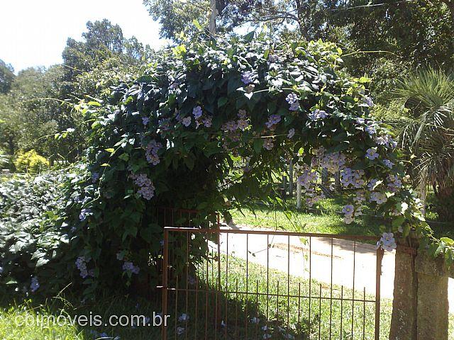 Casa 3 Dorm, Morro Grande, Viamão (103104) - Foto 5