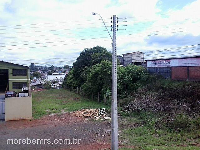 More Bem Imóveis - Terreno, Morada do Vale I I