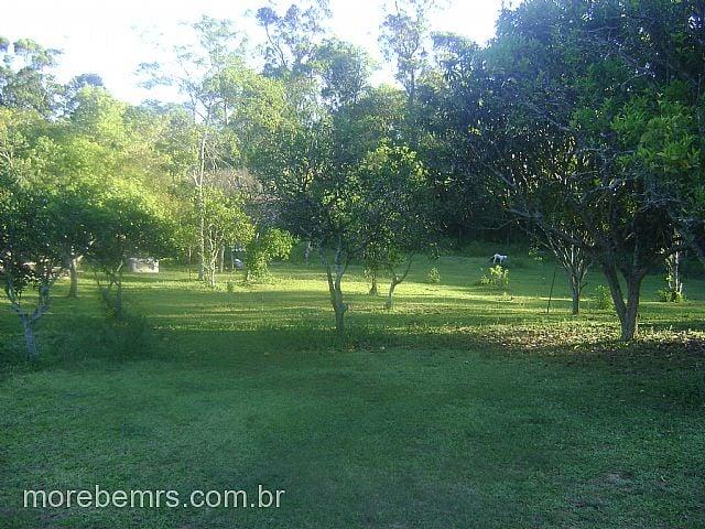 More Bem Imóveis - Sítio 2 Dorm, Costa do Ipiranga - Foto 7