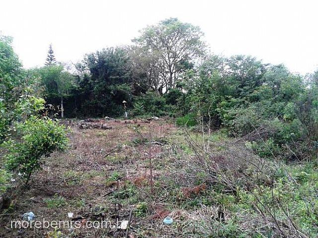 Casa, Santo Antônio, Gravataí (170442) - Foto 10