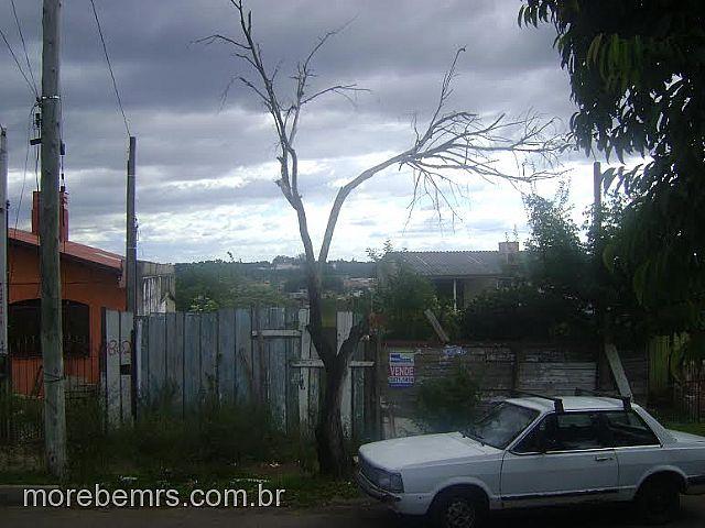 More Bem Imóveis - Terreno, Vista Alegre (242748) - Foto 4