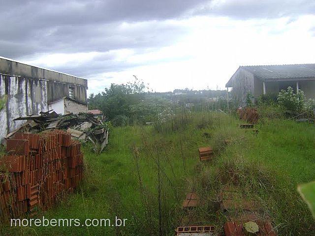 More Bem Imóveis - Terreno, Vista Alegre (242748)
