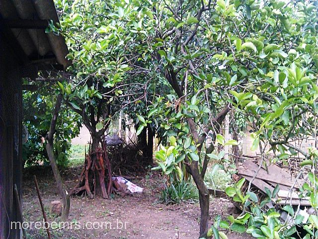 More Bem Imóveis - Casa 2 Dorm, Vila Regina - Foto 6