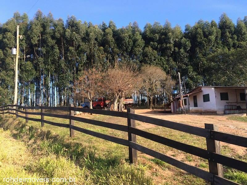 Chácara, Passo do Moura, Cachoeira do Sul (302857) - Foto 2