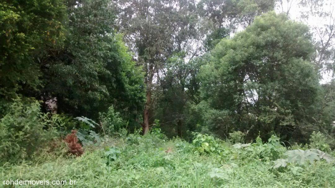 Terreno, Noêmia, Cachoeira do Sul (307545)