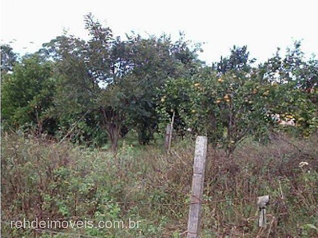 Chácara, Passo do Moura, Cachoeira do Sul (32672) - Foto 4