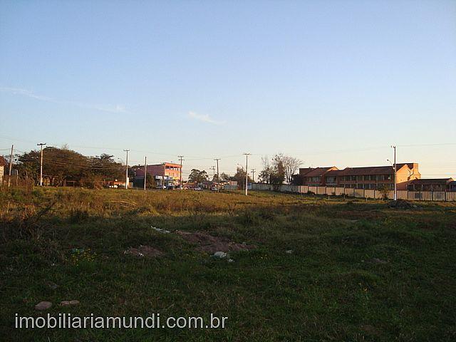 Terreno, Altaville, Gravataí (158439) - Foto 2