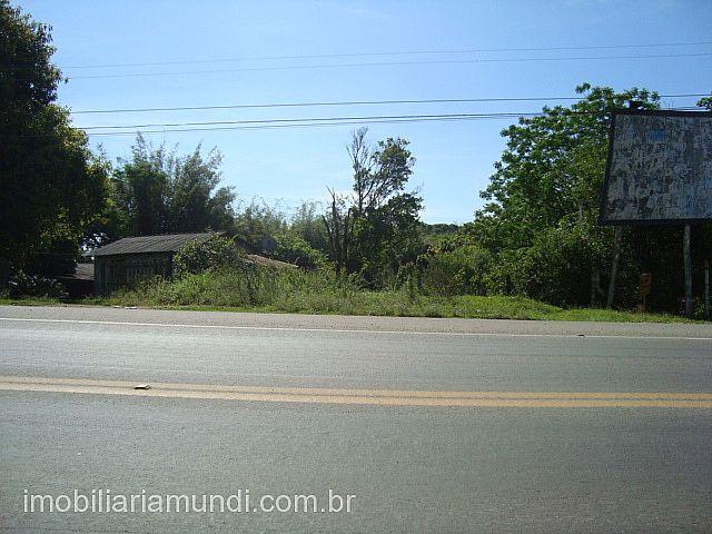 Mundi Imobiliária Gravataí - Terreno, Vila Neila - Foto 2