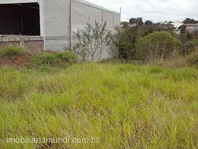 Mundi Imobiliária Gravataí - Terreno, Planaltina - Foto 2