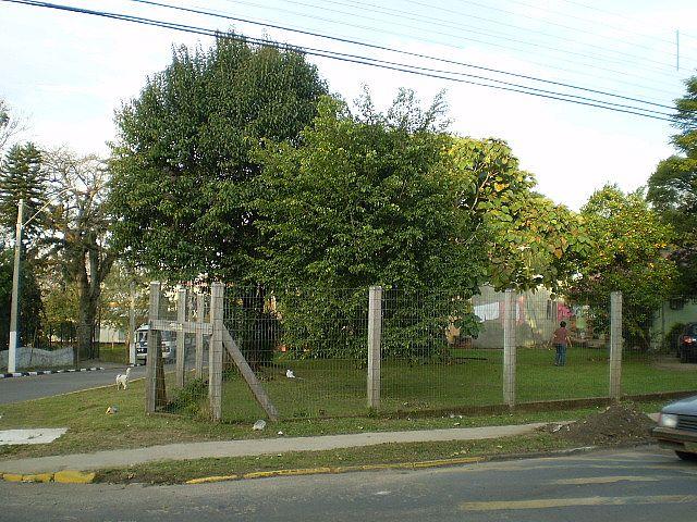 Casa, Centro, Gravataí (30235) - Foto 5