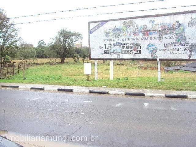 Mundi Imobiliária Gravataí - Terreno, Gravataí