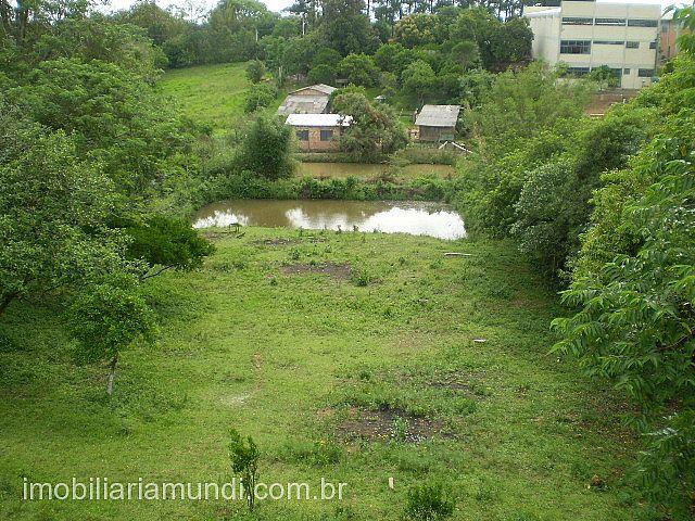 Terreno, Mato Alto, Gravataí (70933) - Foto 8