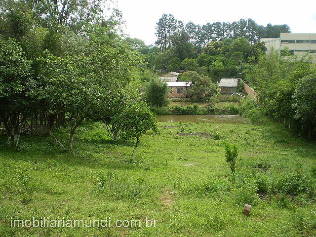 Terreno, Mato Alto, Gravataí (70933) - Foto 4