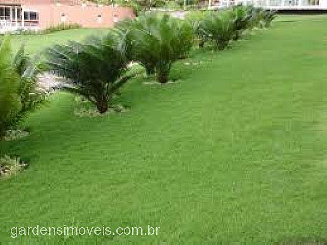 Terreno, Centro, Estancia Velha (105074)