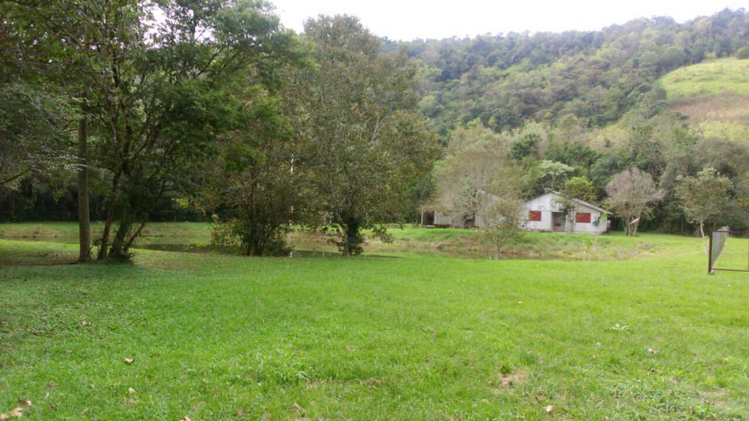 Fazenda, Linha Nacente do Prado, Vicente Dutra (339616) - Foto 9