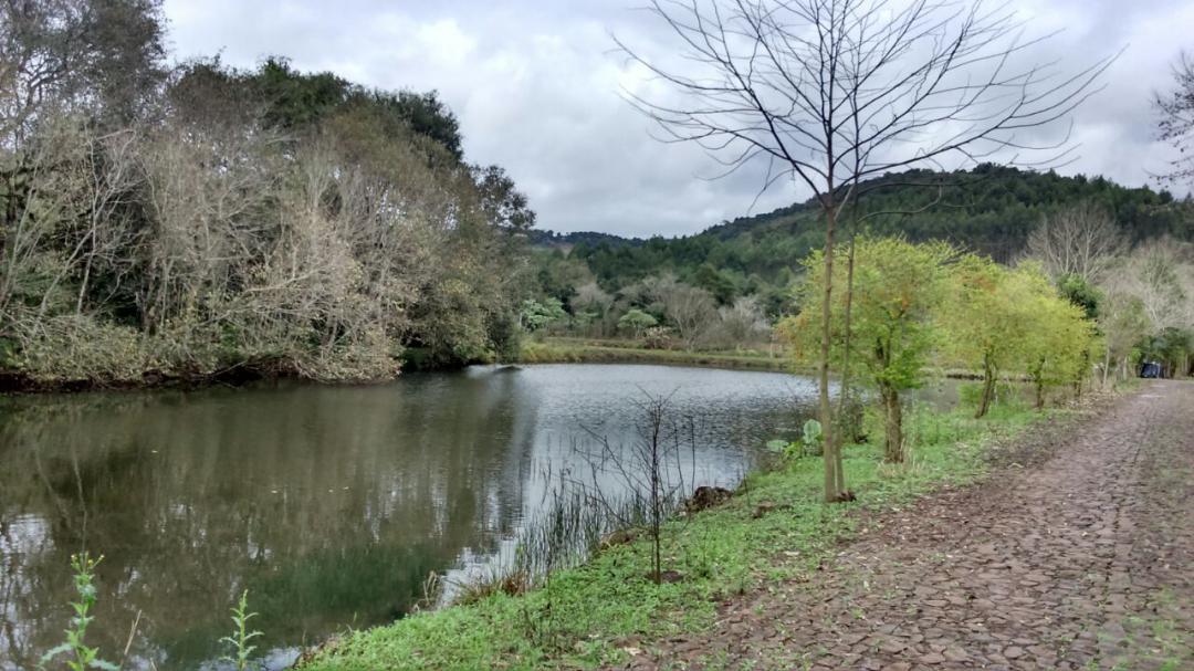 Fazenda, Linha Nacente do Prado, Vicente Dutra (339616)