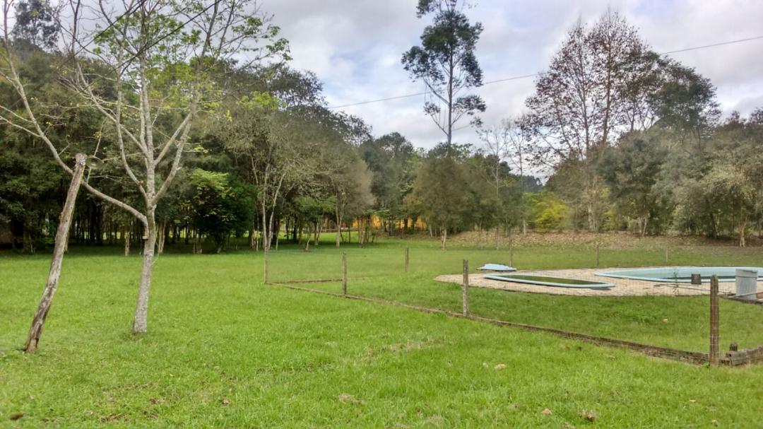 Fazenda, Linha Nacente do Prado, Vicente Dutra (339616) - Foto 3