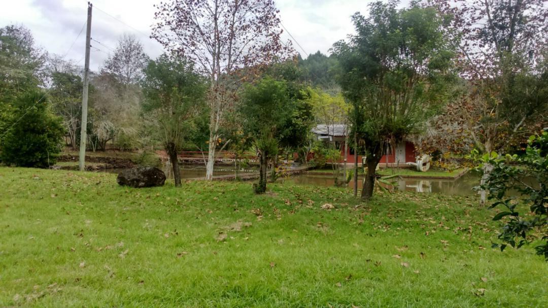 Gardens Imóveis - Fazenda, Linha Nacente do Prado - Foto 2